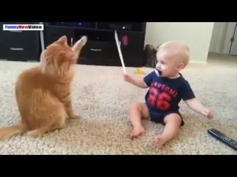 baby funny clips lots of laughing