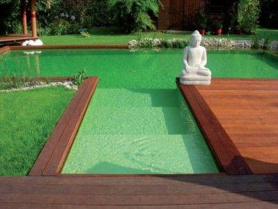 Splendide bassin de piscine naturelle.