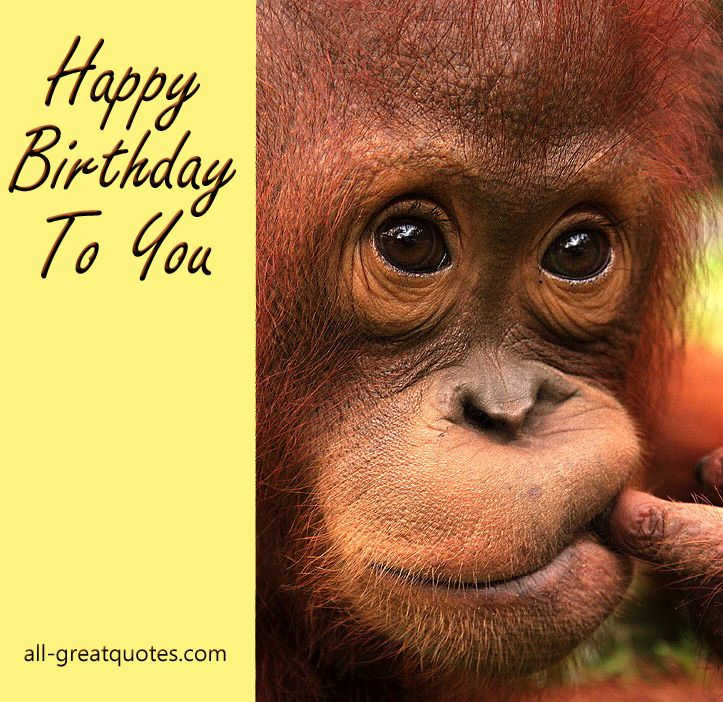 Happy Birthday To You - Happy Birthday Wishes - Greetings - all-greatquotes.com