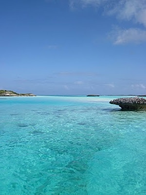 plodding in paradise: NORMANS CAY: Exumas, Bahamas