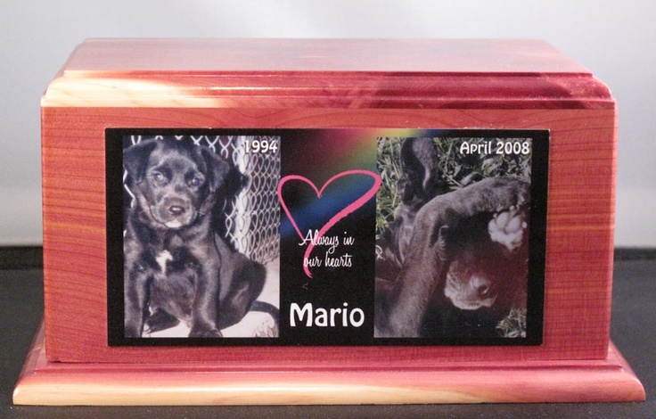 Canadian #Pet #Memorial presents wide collection of pet related products. http://barrie.locanto.ca/ID_160096880/Pet-Memorial.html