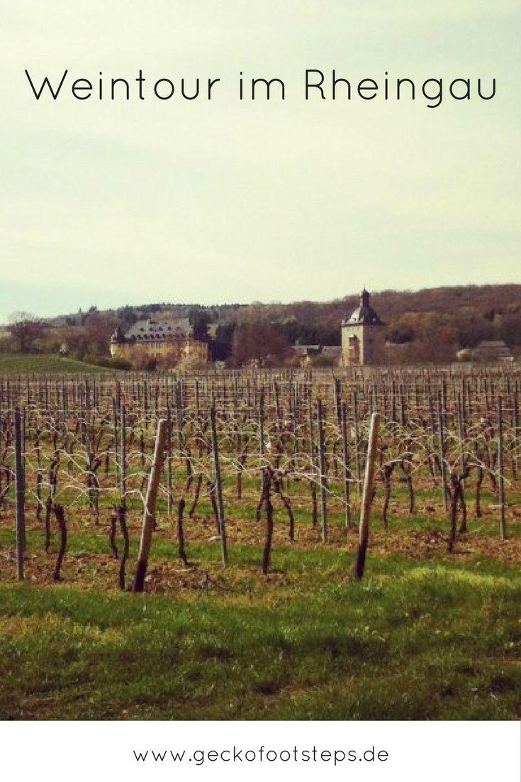 Du magst Wein und schöne Schlösser? Dann solltest Du ein entspanntes Wochenende mit Schloss- und Weintour im Rheingau verbringen!
