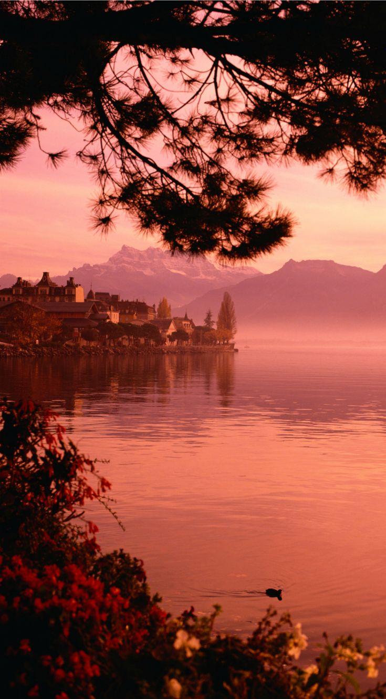 Die Stadt Montreux besitzt eine einmalige Lage am Genfer See in der Schweiz. Sie liegt im Schatten der über 2000 Meter hohen Berggipfel der Schweizer Alpen und überrascht trotzdem mit mildem Klima und einer mediterranen Vegetation an den Ufern des Sees. #verschweizert