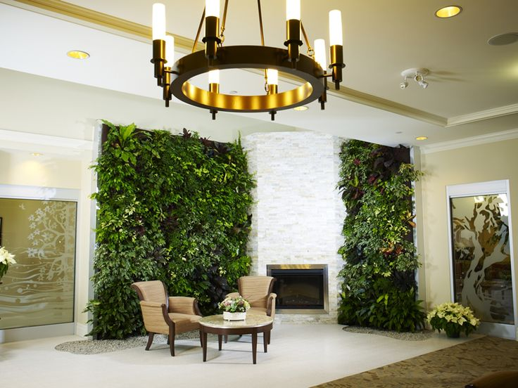 living wall ideas 1555 best wall gardening images on pinterest vertical gardens