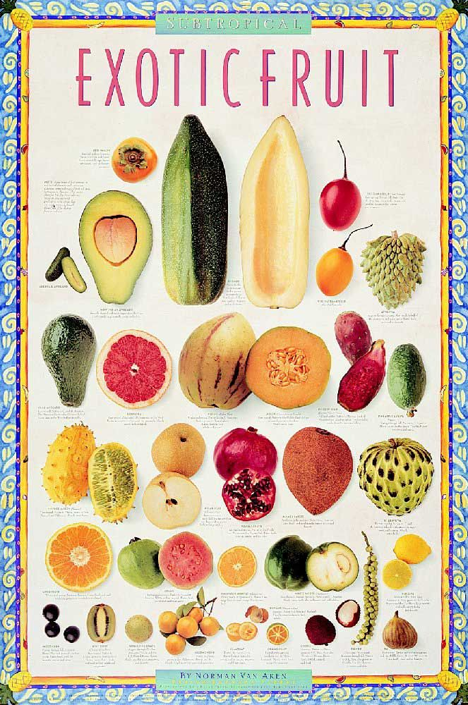 Posters - Exotic Tropical and Subtropical Fruit Poster Set ...