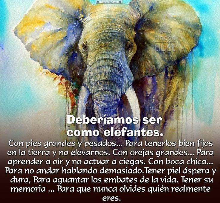 Deberíamos ser como elefantes … Con pies grandes y pesados… Para tenerlos bien fijos en la tierra y no elevarnos. Con orejas grandes… Para aprender a oír y no actuar a ciegas. Con la boca chica… Para no andar hablando demasiado. Tener piel áspera y dura, Para aguantar los embates de la vida. Tener su …