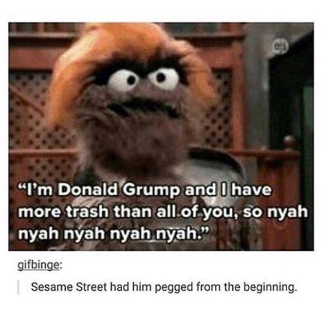 Best 25 Muppet Meme Ideas On Pinterest: Best 25+ Sesame Street Quotes Ideas On Pinterest