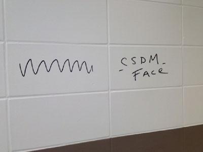 Protection surfaces lisses, murs salles de bain de l'École publique FACE, Montréal.