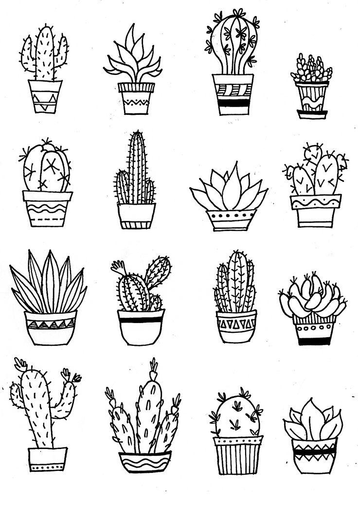 Cactus illustration, doodle