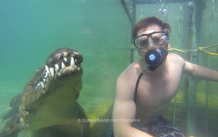 Croc Cage Diving - Vic Falls. Epic fun!