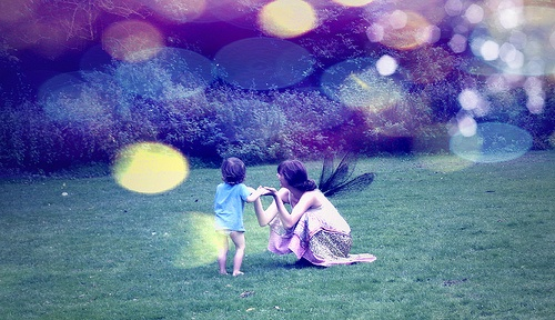 Fairies at the Bottom of the Garden by emaleese