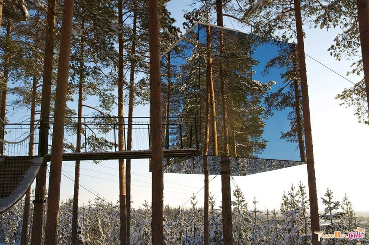 Tree House Sweden, Tree Hotel