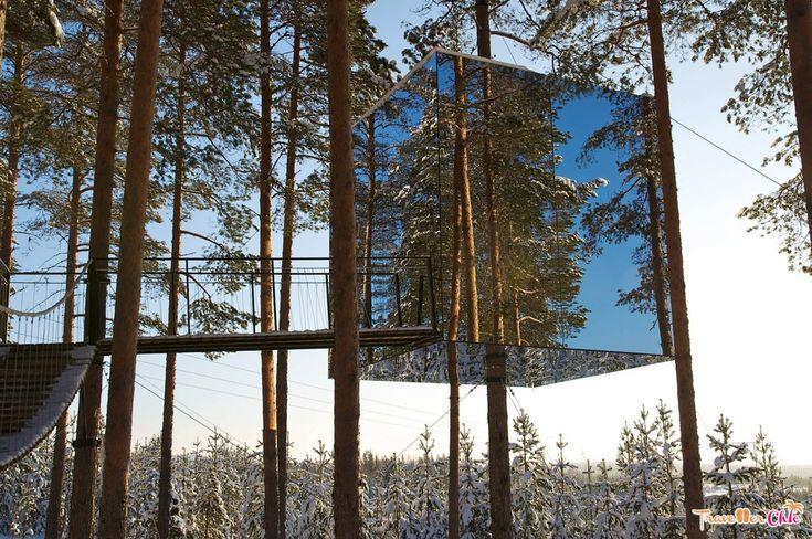 Tree House Sweden, Tree Hotel
