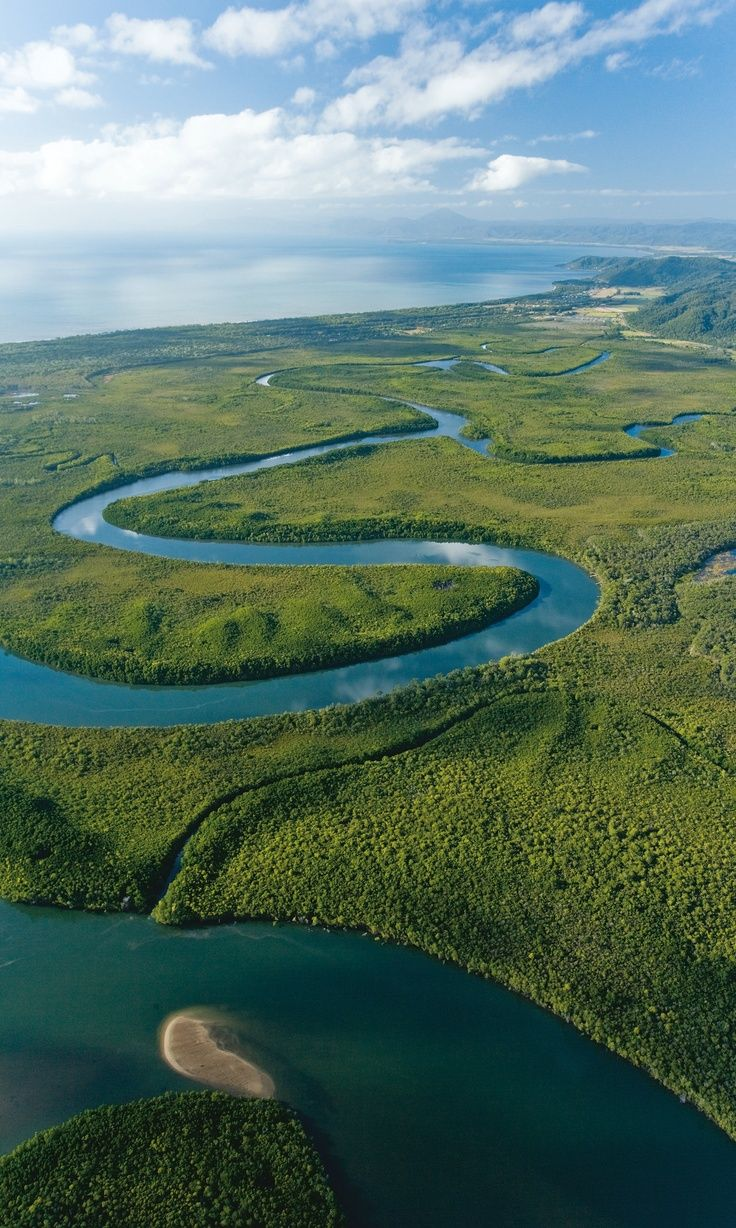 Daintree Rainforest. Bucketlist.
