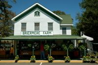 Briermere Farms - Riverhead NY - Blueberry Cream Pie