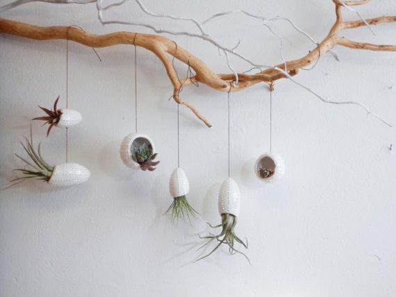 Jardinera cerámica colgante en forma de calamar por OlisCupboard