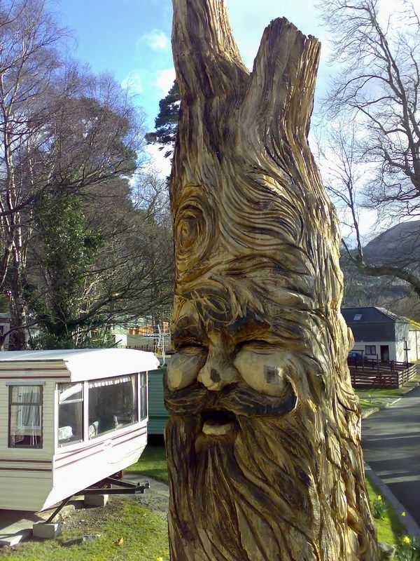 Images about wooden expressions faces in the trees
