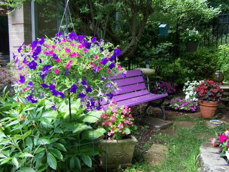 My purple bench.