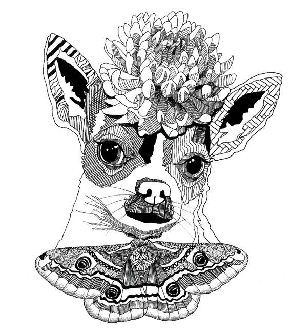 Original Drawing Dog With Flower Hat And Moth Bow Tie One Of A Kind On Etsy Kr