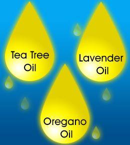 Aceites esenciales contra el acné