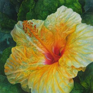1000 ideas about hibiscus drawing on pinterest hibiscus flower drawing tropical paintings. Black Bedroom Furniture Sets. Home Design Ideas