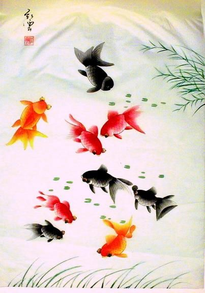 17 best images about fishes on pinterest rice paper koi for Scott and white fish pond