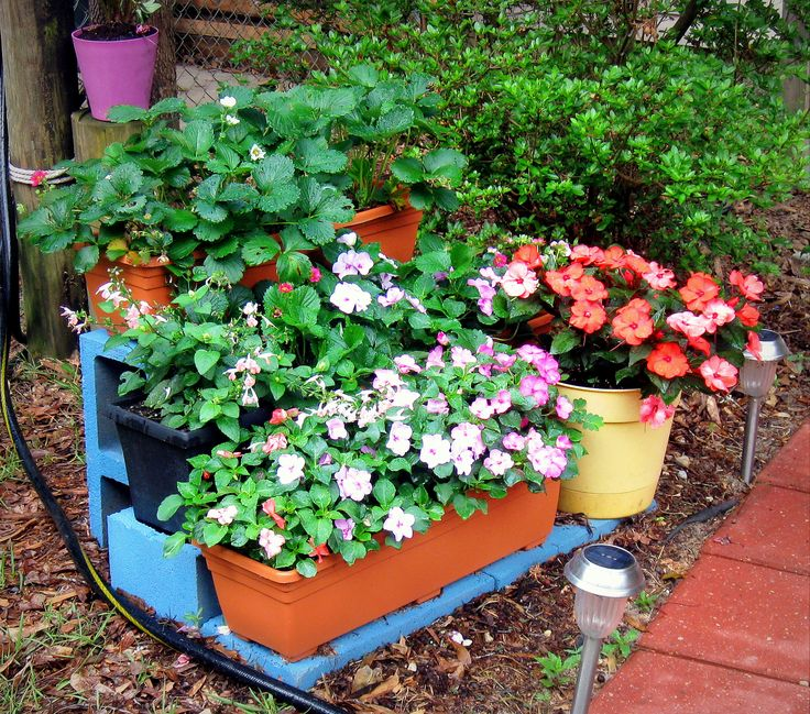 This three-tier planter uses spray painted cinder blocks, three plastic window boxes, and two potted flowers. Plants are a mixture of strawberries, salvia, and impatiens.