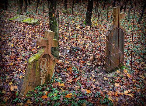 Kiszely István  Elválasztva November az emlékezés hónapja, a csáberényi régi temetőben láttam ezeket a sírköveket.  Több kép Istvántól: www.facebook.com/istvan.kiszely