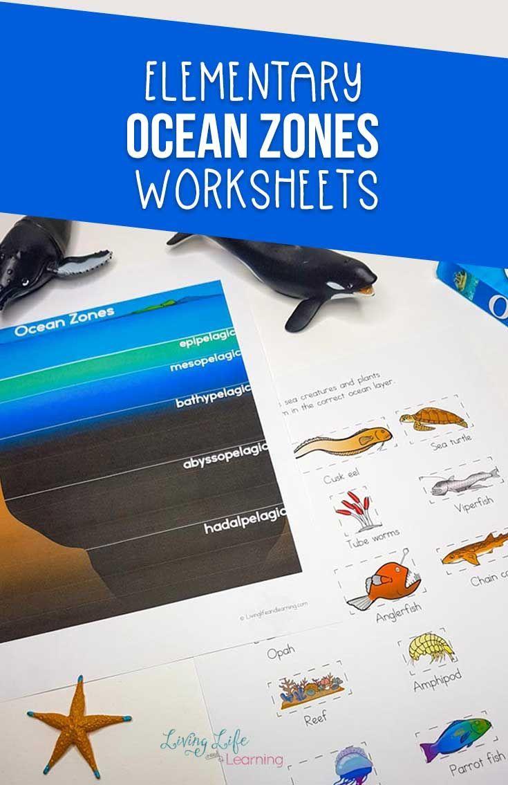 Ocean Zones Worksheets For Kids Ocean Zones Elementary Science Activities Ocean Activities