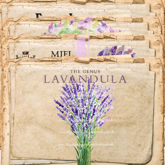 French Inspired Lavender 1 Shabby Chic Printable Instant Download Digital collage sheet vintage scrapbook supply