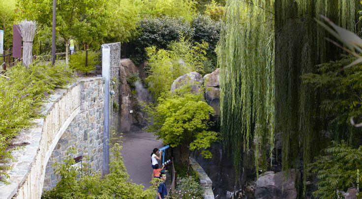 104 besten nelson byrd woltz bilder auf pinterest for Nelson byrd woltz landscape architects