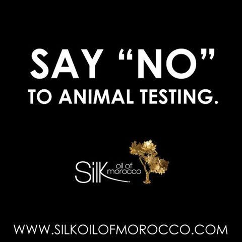 Silk Make Up Collection. For Flawless Looking Skin. #silkoilofmorocco #arganoil #moroccanoil #organic #natural #cosmetics #beauty #naturalmakeup #mineralmakeup (hair and Beauty)