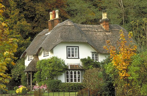 Cottage in the Woods - Sleepy Thatched Cottage in New Forest, England