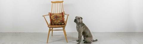 Learn about where to buy Ercol furniture, how to care for Ercol furniture, how to value and identify Ercol furniture and much more.
