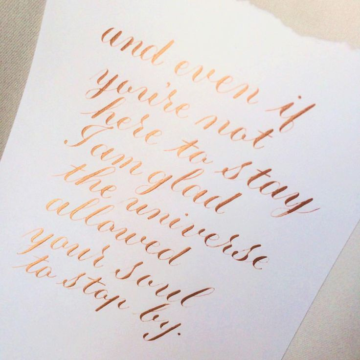 some bitter truths i have to accept, but one can hope you're here to stay  #calligraphy • #calligraphyPH • #Copperplate • #CopperplatePH • #flourish • #Finetec • #flourishforum • #CopperplateCalligraphy • #FinetecPalette • #thegoldinitiative • #thedailytype