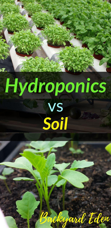 Hydroponics vs Soil | Hydroponics | DIY Hydroponics | Hydroponics for beginners | Indoor Hydroponics | Hydroponic Wall | Hydroponic System | Hydroponic Gardening | Homemade Hydroponic systems | Hydroponic Nutrients | Kratky Hydroponics | Greenhouse Hydroponics | Hydroponics Design | Hydroponic Vegetables | Backyard-Eden.com #hydroponicsdiy