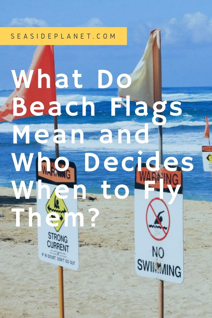 What Do Beach Flags Mean And When Do They Fly Beach Flags