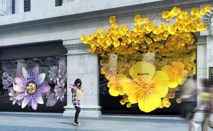 Adoptant les codes du luxe pour le lancement de l'Apple Watch, la marque a réservé les 24 vitrines de Selfriges pour des installations oniriques florales