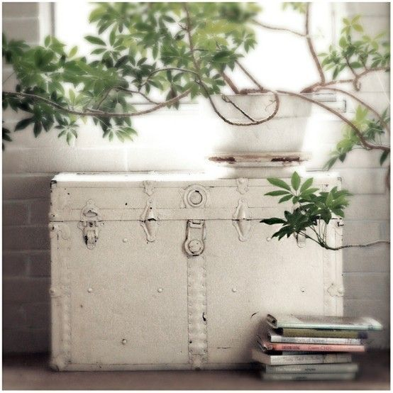 vintage white painted trunk...thinkin about painting my trunk..