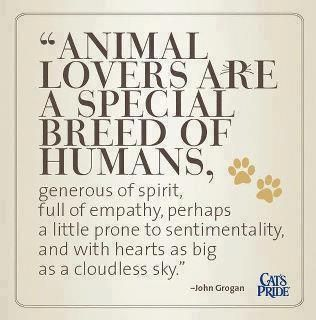 animal lovers are a special breed of humans. generous of spirit, full of…