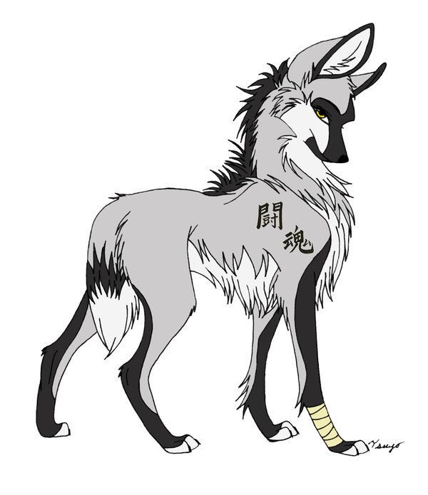Anime drawings anime wolf anime wolves photo 25255384 fanpop fanclubs
