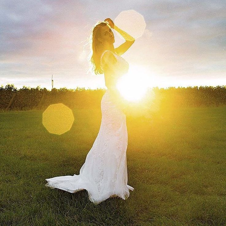 Truth & Tales - Bridal Portraits - Golden hour - Vineyard - Chateau Des Charms - Niagara on the Lake - www.truthandtalesstudio.com