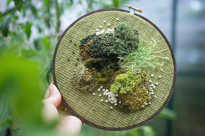 Muschi e licheni ricamati su semplici telai da ricamo.