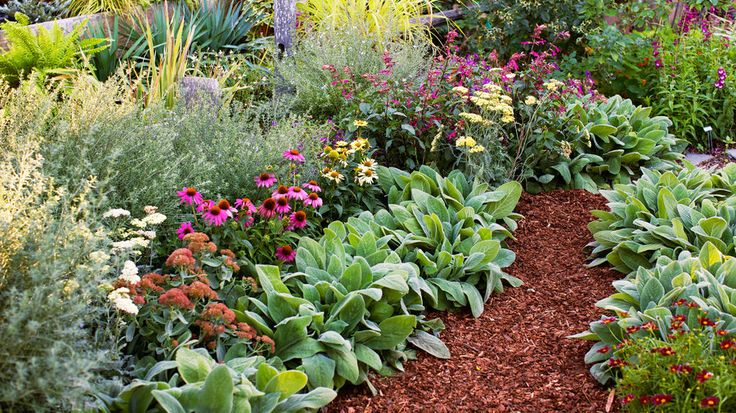 1474 best garden beauty and inspiration images on for Easy maintenance flower beds