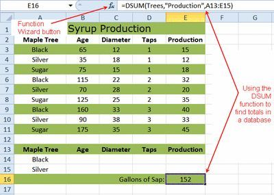 Excel DSUM Function Tutorial
