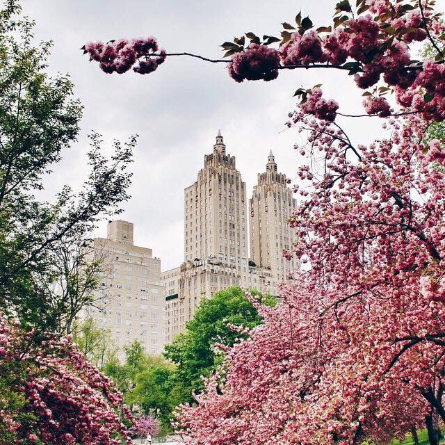 10201 Best Images About New York Quiz On Pinterest