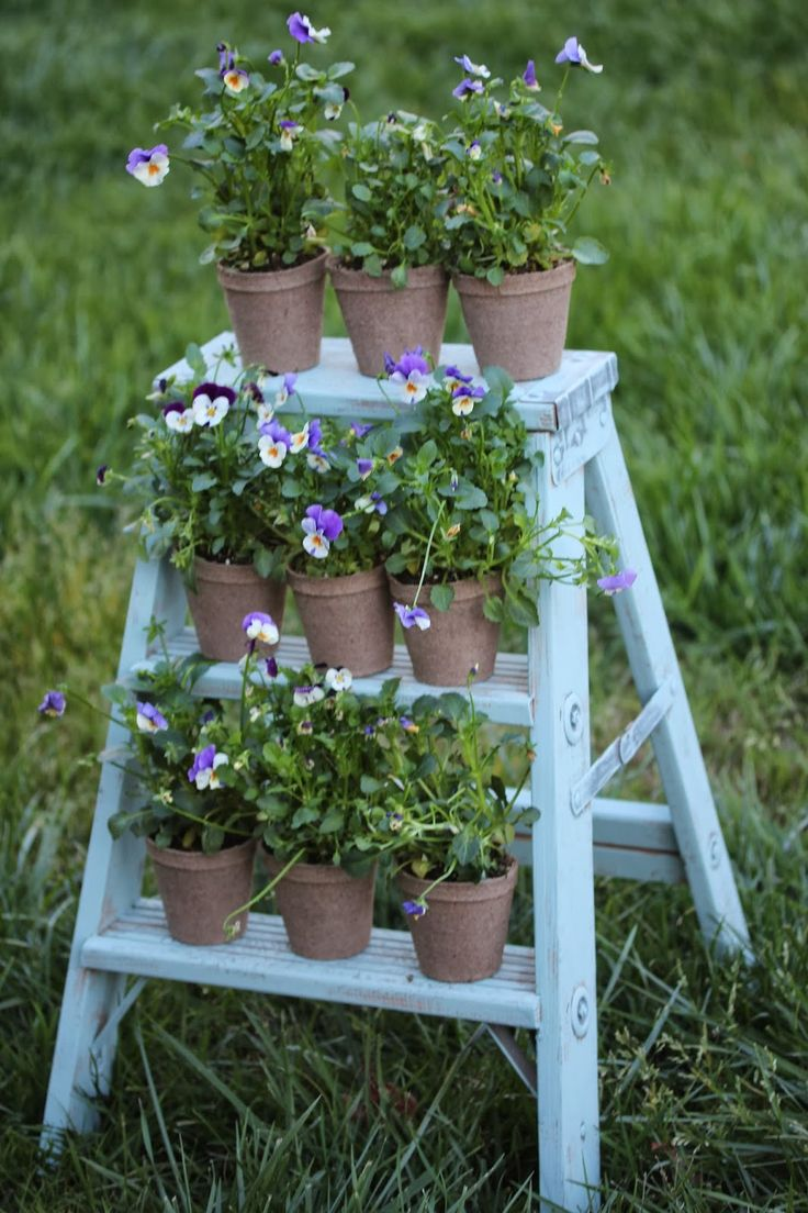 Rooted In Thyme: ~Springtime Ladder~