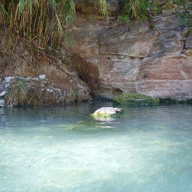 TERME SEGESTANE DI PONTE BAGNI Le acque sulfuree che sgorgano dal Fiume Caldo formano delle vasche naturali in cui è possibile immergersi. Temperatura 47 gradi, benessere (gratuito) assicurato.