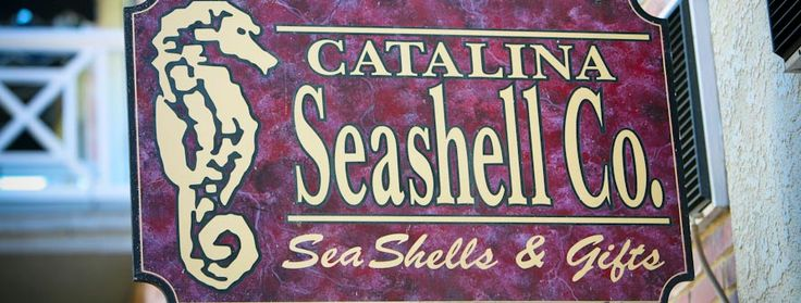 This place is in our hotel, We can get shells and stuff.  Catalina Seashell Co. - Hotel Metropole | Catalina Hotel | Catalina Island Hotels