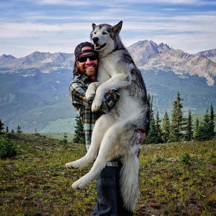 Man Documents His Incredible Outdoor Adventures with His Gorgeous Wolfdog - My Modern Met
